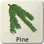 Celtic Tree - Pine