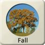 Season - Fall