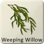Celtic Tree - Weeping Willow