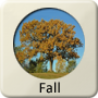 Astrology Season - Fall