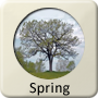 Astrology Season - Spring