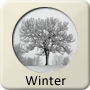 Astrology Season - Winter