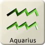 Western Zodiac Star Sign - Aquarius