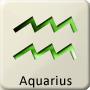Western Zodiac - Aquarius